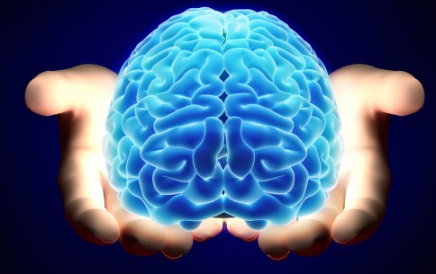 10 Surprising Things That Benefit Our Brain That You Can Do Everyday