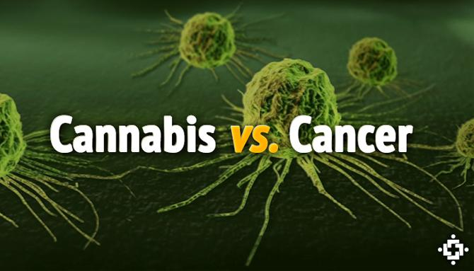 The Science of Marijuana: | Cancer Quick Facts