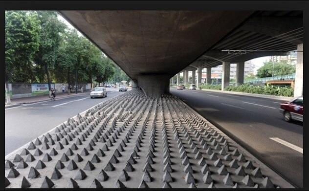 Anti-homeless spikes installed in London neighborhood spark outrage