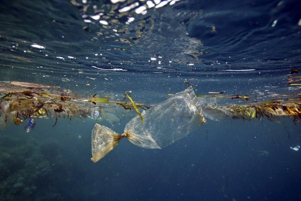 First of Its Kind Map Reveals Extent of Plastic Debris In Our Oceans