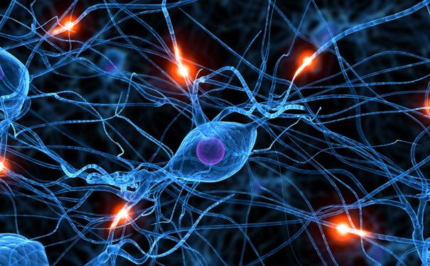 Scientists used to believe that information was only transferred along neural tissue, now they found that it can move in waves, leaping small distances as it travels across the body.
