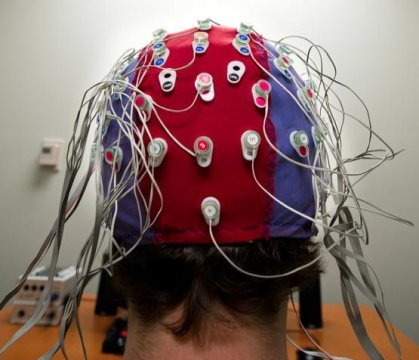 A cap worn by subjects in a Michigan State University experiment picks up EEG signals at the scalp; the signals are then transmitted via optical cable to a computer where the data is stored for analysis. The experiment deals with people learning from mistakes. Credit: G.L. Kohuth