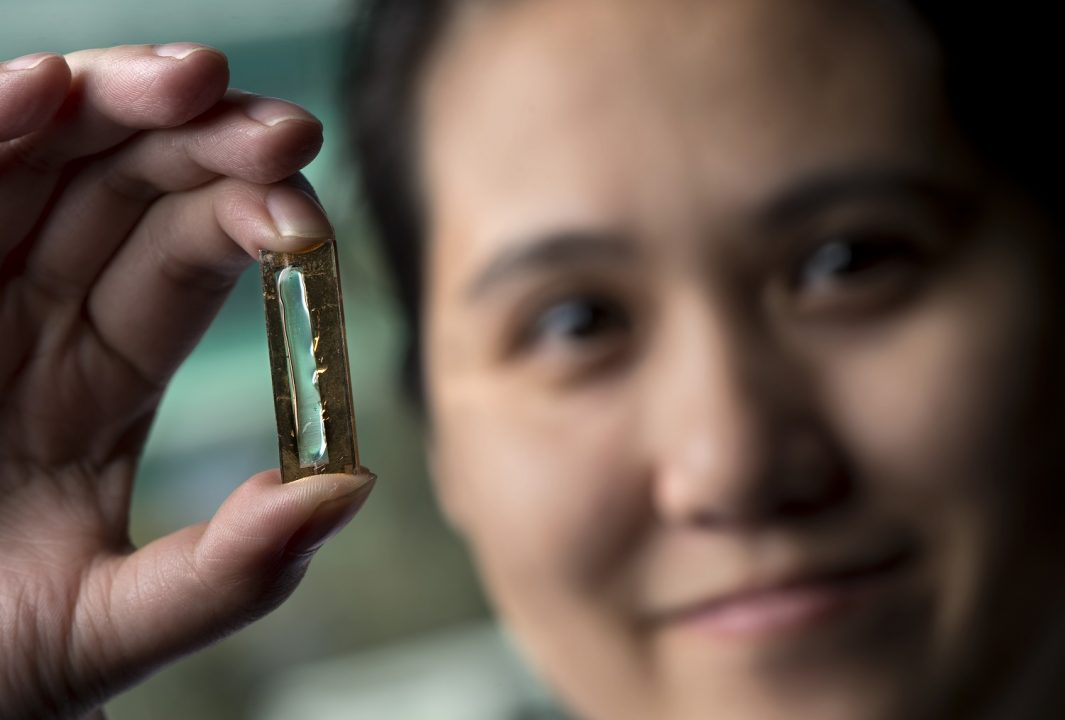 Battery That Could Last a Lifetime