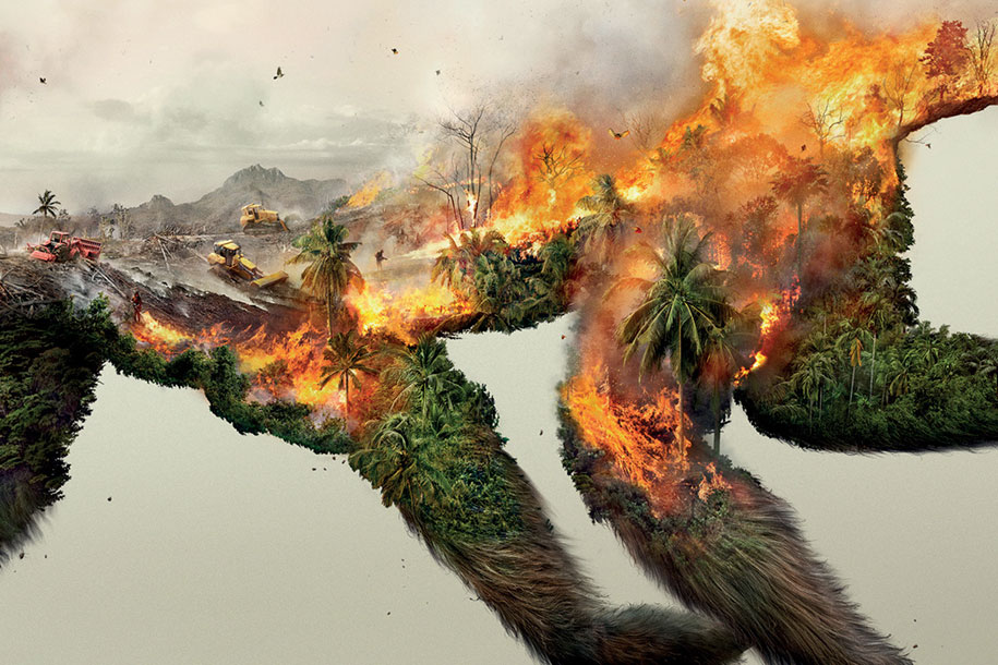 Destroying Nature is Destroying Life forest fires