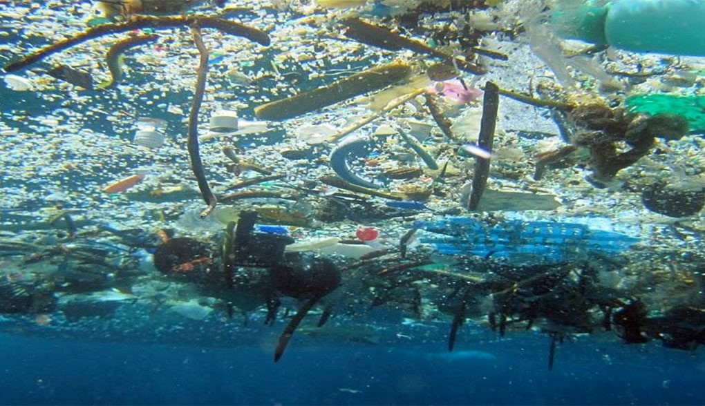 Marine Debris, photo by NOAA
