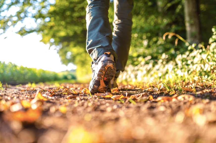 Walking Combines Time in Nature and Exercise to Clear an Anxious Mind