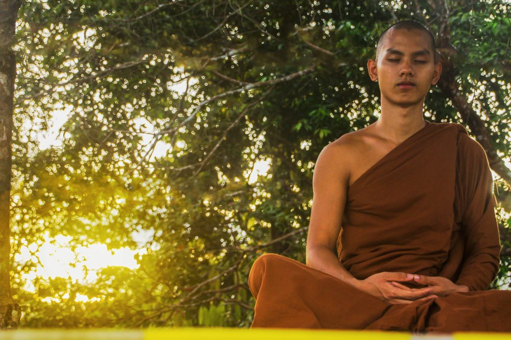 Meditating in nature helps us absorb the Qi or life energy that is abundant there.