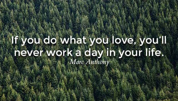 Anthony Love What You Do