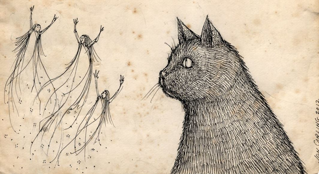 """Can Cats and Dogs See """"Spirits""""? Science Confirms They Can See Frequencies We Can't"""