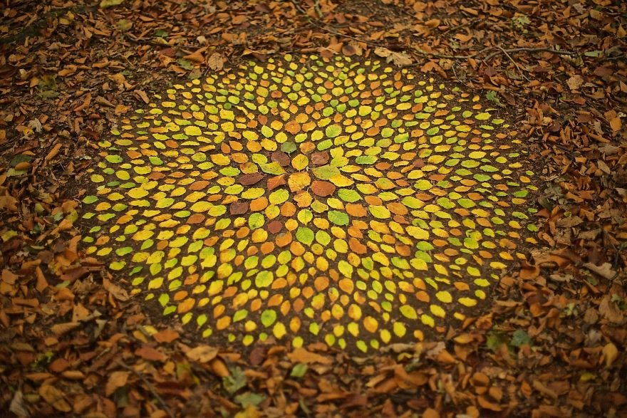 Artist Spends Hours Creating Natural Mandalas, And He's Hoping You Will Find Them James-Brunt-Nature-Mandalas-18