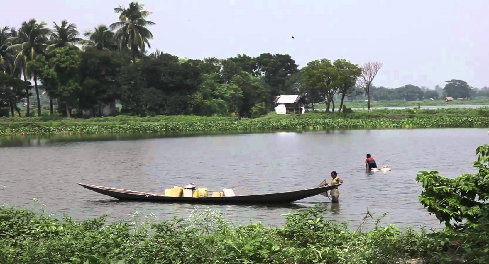 Natural Wetland in India Filters 198 Million Gallons of Waste Every Day Without Chemicals East-Kolkata-Wetlands-2
