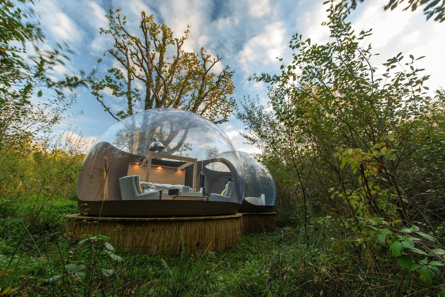 Awe Inspiring Bubble Domes In Ireland Allow You To