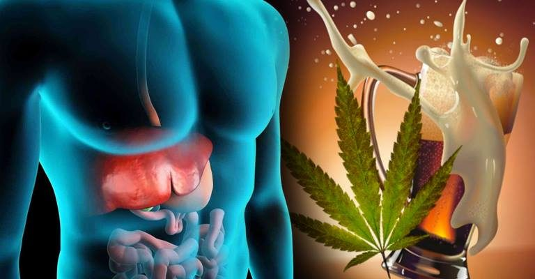 Largest Study Of Its Kind Finds Cannabis Helps Prevent Alcohol-Related Liver Damage Weed-768x400