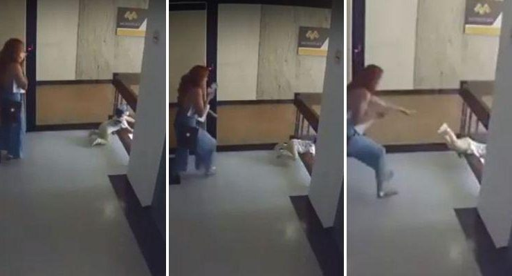 Mom Catches Kid Falling