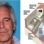 Epstein Suicide Impossible