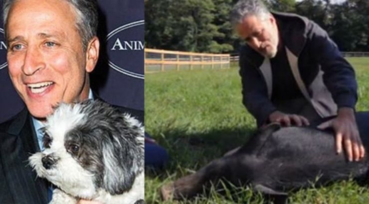 Jon Stewart Animals