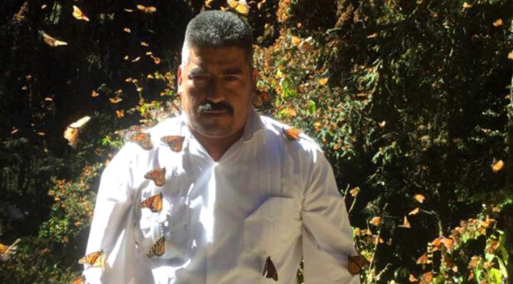 Mexican Monarch Butterfly Activist Found Dead