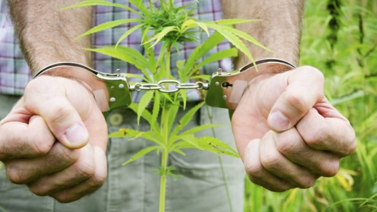 More people were arrested for Cannabis possession than ALL violent crimes put together in the US last year