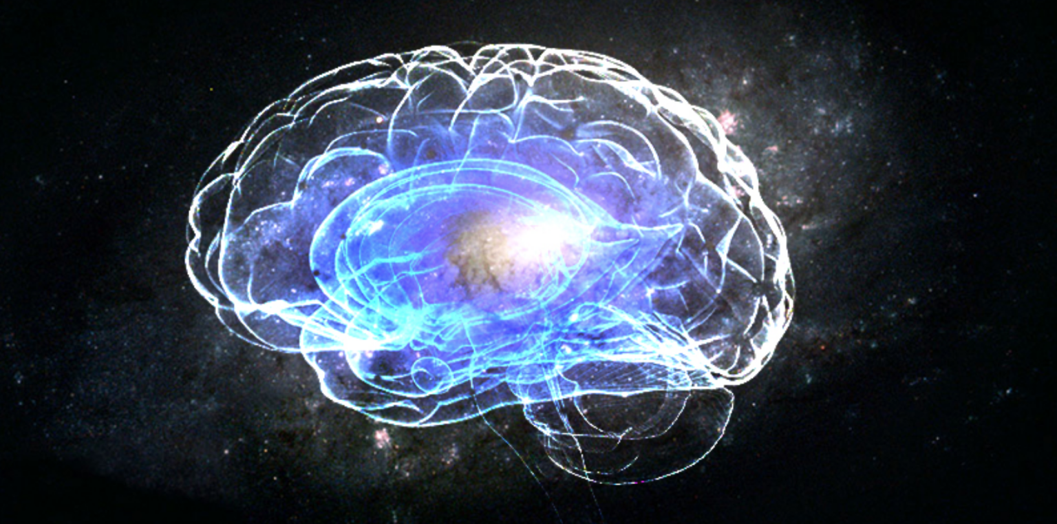 the brain and universe have similarities